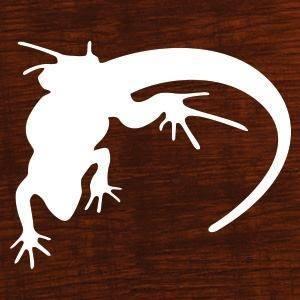 lounge-lizard-web-development-logo